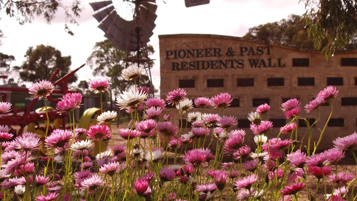 Sky Works Pics - Pioneer Residents Wall