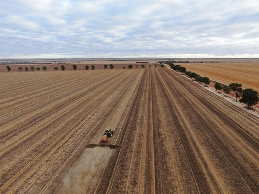 Sky Works Pics - Seeding distant view
